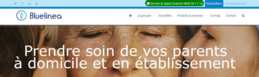 capture ecran du site Bluelinea