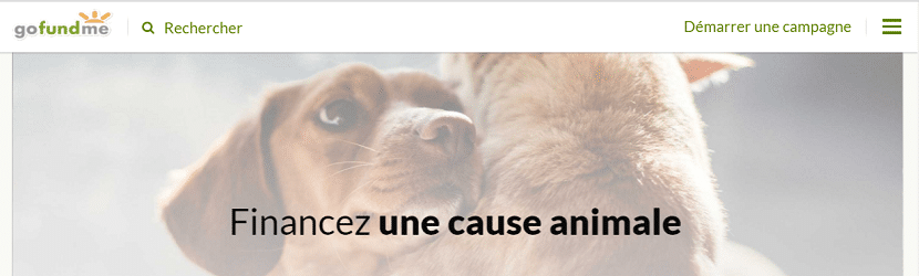 Capture du site Gofundme